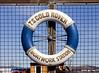 TS Gold Rover Lifebelt in James Watt Dock - Greenock