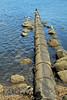 Waste Pipe off Greenock Esplanade