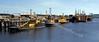 Serco Denholm Fleet in the Great Harbour at Greenock