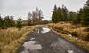 Near the Gryfe Reservoir - 1 January 2016