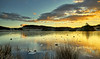 Knapps Loch near Kilmacolm - 3 January 2021