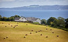 View from Camsail Forest Near Kilcreggan - 22 August 2020