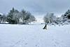 Snowy Langbank - 29 December 2017