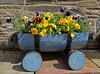 Flower Display - Luss - 24 June 2012