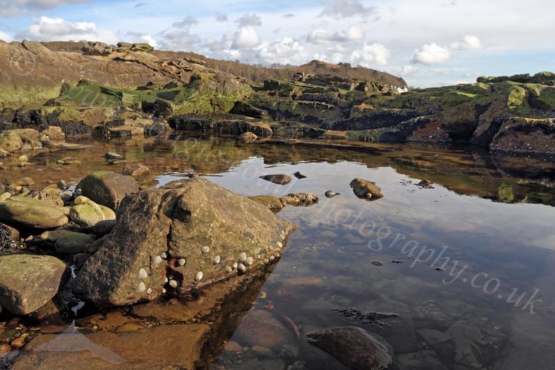 Rock Pool - Millport - 17 March 2012