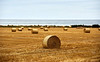 Bales of Hay in Buckie - 10 September 2020