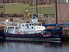'Gemini Explorer' - Wildlife boat trips vessel