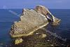 Moray Coast - Bow Fiddle Rock
