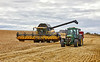 Harvesting at Portknockie - 30 August 2020