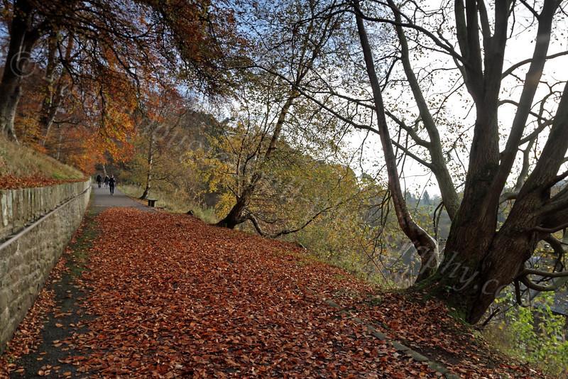 Autumn in - New Lanark - 13 November 2011
