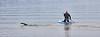 Swimmer and Paddler at Rhu - 29 May 2021
