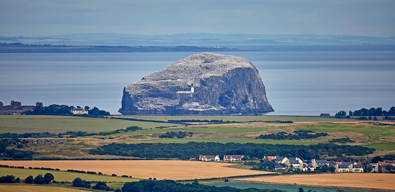 Bass Rock - 23 July 2016