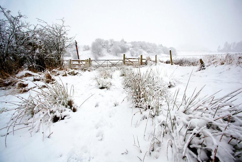Snowscape - Langbank - 25 January 2013