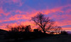Sunset - Langbank - 9 January 2013