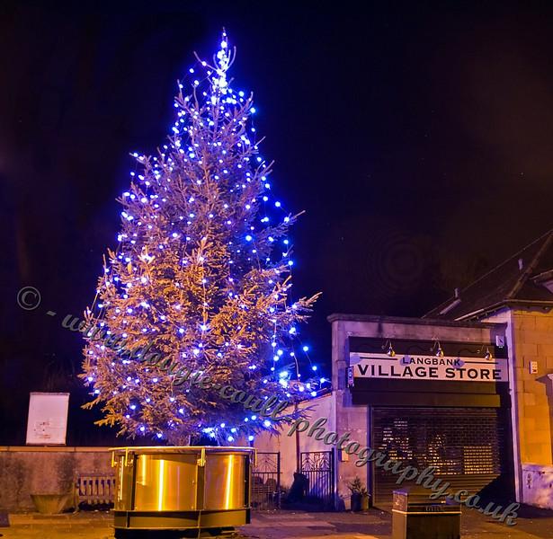 Christmas Tree - Langbank