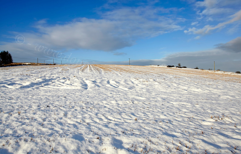 Snowscape - Langbank - 26 January 2013