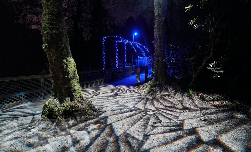 'Electric Glen' in Rouken Glen - 16 February 2014