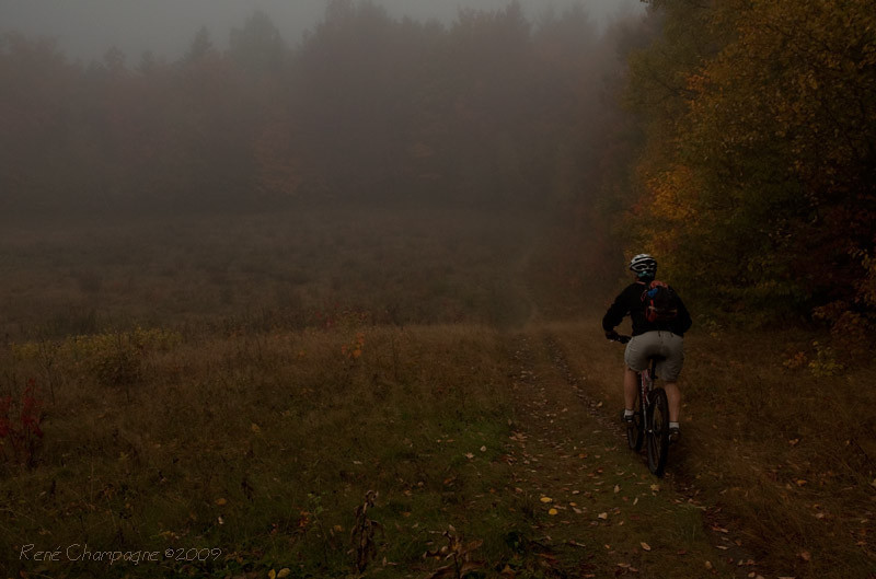 Moose Alley Trail