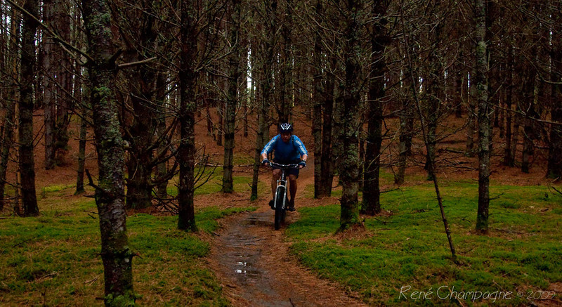 Todd on the Old Webs Trail.