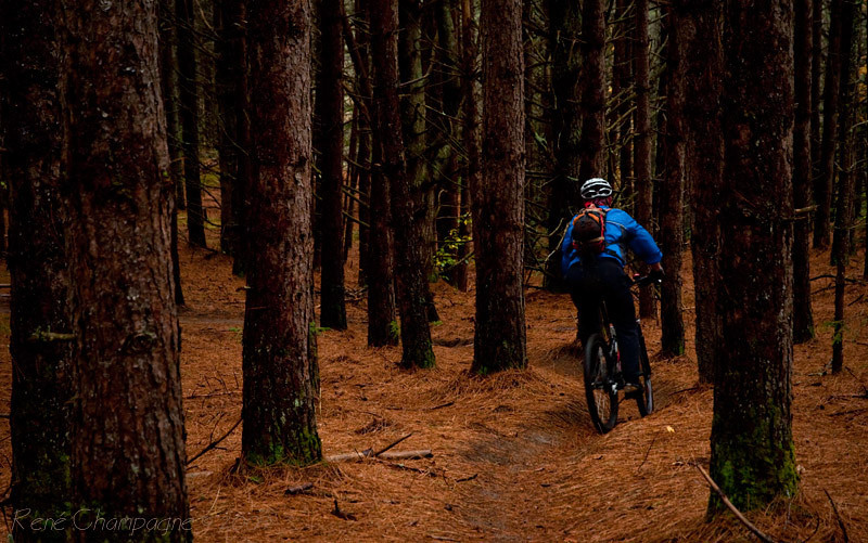 Rich ripping through the Old Webs Trail