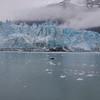 Glacier and sea ice in Glacier Bay Alaska