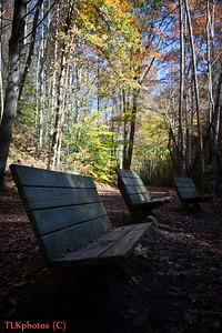 Deep Creek Trail at Tom Branch Falls