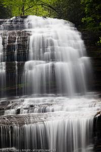 Pearson's Falls April 2010
