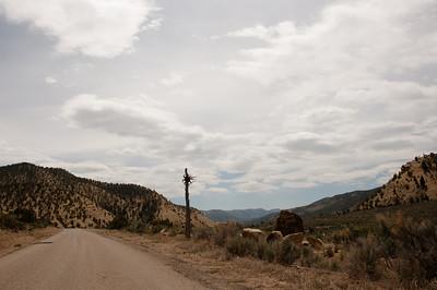 Vernal Road Trip 2011