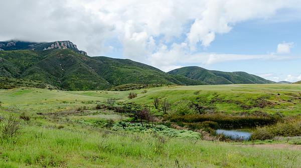 The late rain is keeping Satwiwa green.