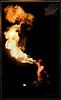 Public Fire Show 144 IP