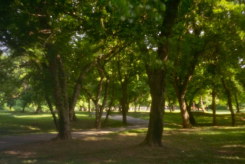 Asheville park done with pinhole on digital camera. 2018