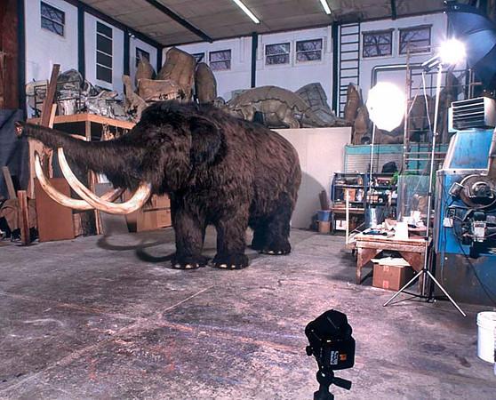 Set up at Jonas Studios, Hudson NY, to photograph a life size Woolly Mammoth.