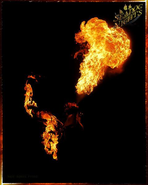 fire farie (1) copy 2 IP