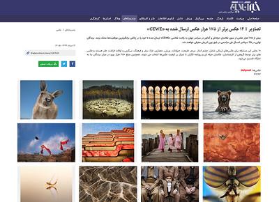 ۴ عکس برتر از ۱۷۵ هزار عکس ارسال شده به «CEWE» | تصاویر