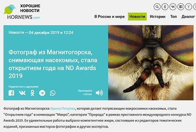 Фотограф из Магнитогорска, снимающая насекомых, стала открытием года на ND Awards 2019