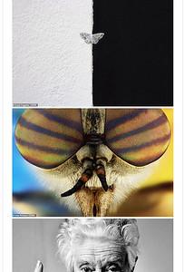 """صور مذهلة من مسابقة """"Cewe Photo Award"""" المرموقة"""