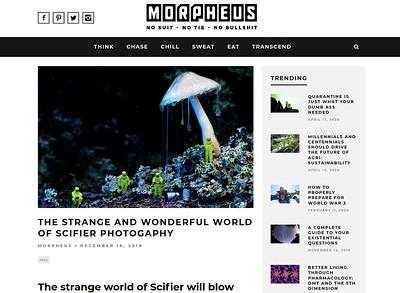 The Strange and Wonderful World of Scifier Photogaphy