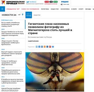 Гигантские глаза насекомых позволили фотографу из Магнитогорска стать лучшей в стране
