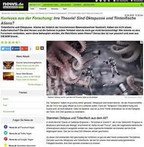 Kurioses aus der Forschung: Irre Theorie! Sind Oktopusse und Tintenfische Aliens?