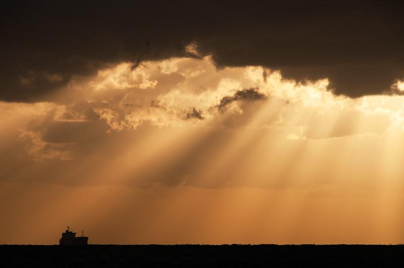 Rays of Light-1- South Florida