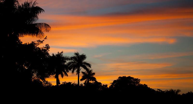 Colors- Everglades NP