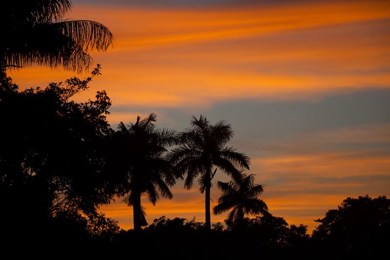 Mastaanee Shaam0 Everglades NP