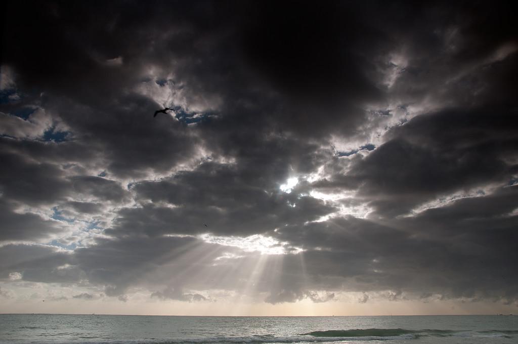 Rays Of Light2-South Florida