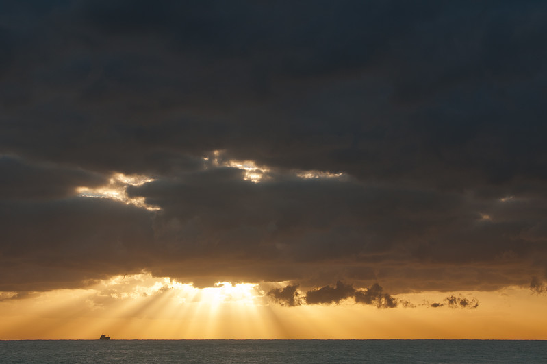 Rays Of Light- South Florida