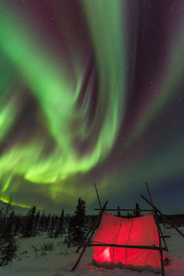 2017_Wapusk National Park_0572