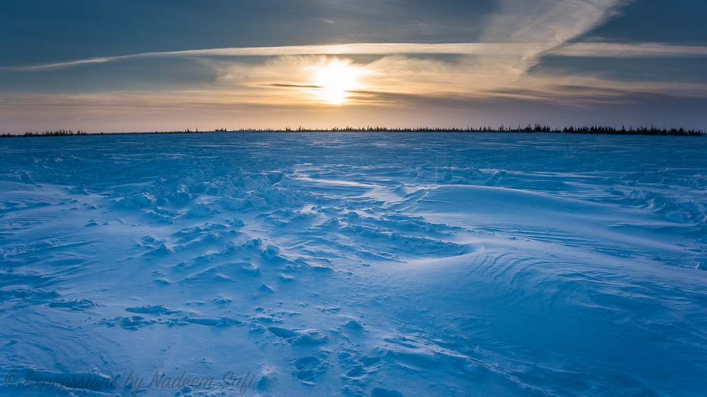 2017_Wapusk National Park_0553