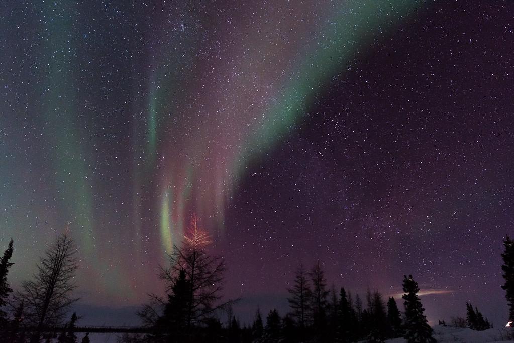 2017_Wapusk National Park_0561