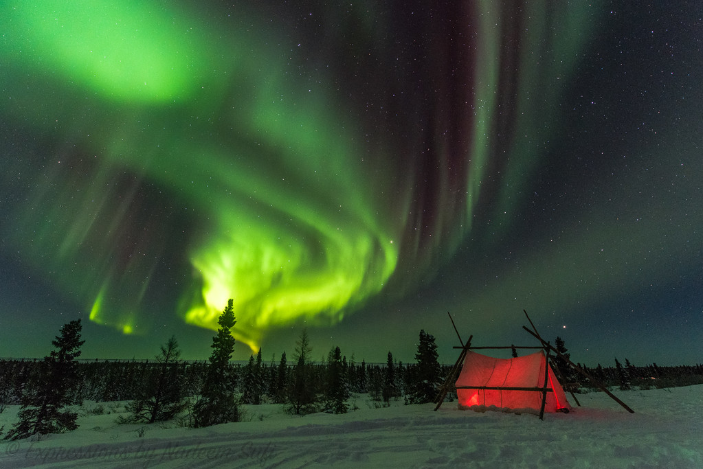 2017_Wapusk National Park_0626
