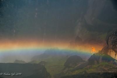 Rainbow Vernal_04