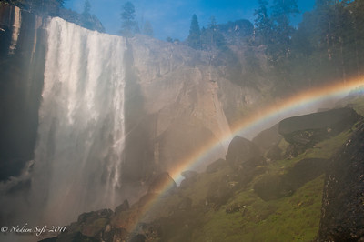 Rainbow Vernal_03
